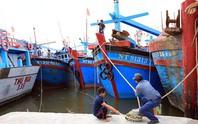 Ninh Thuận – Bình Thuận khẩn trương ứng phó bão số 14