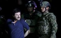 Trùm ma túy El Chapo sang Mỹ ngay trước ngày ông Trump nhậm chức