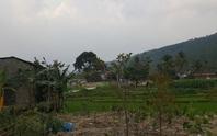 Vĩnh Phúc giao công an làm rõ người dân tố cáo phá rừng làm nghĩa trang (!?)
