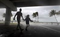 Mỹ: Thành phố ma chờ bão Irma