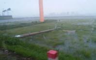 Bão số 10: Cuồng phong quét qua, nhà tốc mái, cây đổ la liệt
