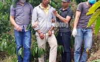 Bắt khẩn cấp nghi phạm giết người chôn xác phi tang ở Lâm Đồng