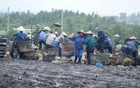 Dân bãi rác Khánh Sơn bật khóc khi đối thoại với lãnh đạo