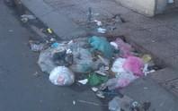 Vẫn nhức nhối tình trạng vứt rác vào miệng cống