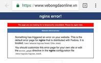 Hệ thống bán vé online trận Việt Nam - Philippines sập toàn tập sau vài phút mở bán