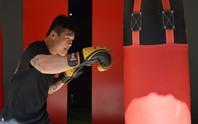 Nam vương boxing Việt chờ ngày giao đấu với võ sư Flores