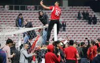 Thắng giao hữu, fan Tunisia ăn mừng như thể vô địch