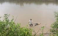 Đi thăm ao cá, tá hỏa phát hiện thi thể trôi trên sông Tiền