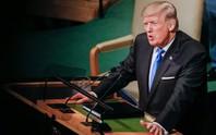 Tổng thống Trump và sàn diễn New York