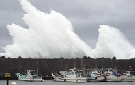 """To gần bằng diện tích Nhật Bản"""", siêu bão Hagibis gầm thét"""