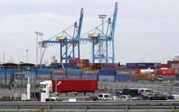 Thời báo Hoàn Cầu: Anh phải chịu trách nhiệm vụ 39 người chết trong container