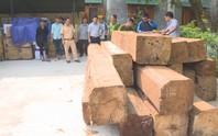 Truy bắt xe tải chở gỗ lậu mang theo dùi cui điện