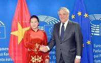Quan hệ Việt Nam - EU phát triển rất tích cực