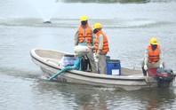 Hà Nội nói gì về chế phẩm xử lý nước độc quyền và vụ 200 tấn cá chết trắng hồ Tây?