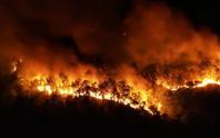 Vụ cháy rừng ở núi Hồng Lĩnh: Tạm giữ một nghi can