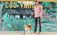 Phim Cậu Vàng: Không có chuyện bắt chó ta đóng thế cảnh bị đánh đập cho chó Nhật?
