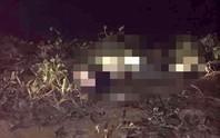 Sau khi cùng đi dự sinh nhật, bạn gái tới nhà nói chàng trai 18 tuổi đã nhảy cầu tự tử