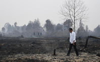 Cạn dần thời gian chống biến đổi khí hậu