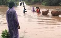 Quảng Trị: Mưa lớn khiến nhiều vùng bị nước dâng chia cắt