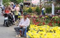 Xin hãy mua hoa, đừng chờ đến trưa 30 Tết!