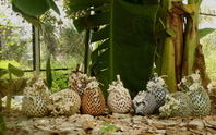 Ngắm bộ sưu tập gốm tại triển lãm Gốm Sài Gòn