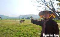 Quảng Bình: Lo ngại dự án giết mổ heo uy hiếp chùa cổ, nhà dân