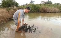 Kho ngọc chục tỉ nằm dưới ao ở huyện M'Đrắk, tỉnh Đắk Lắk