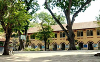 Trường học rất cần cây xanh