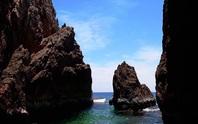 Bình Định thu hồi chủ trương một dự án du lịch ven biển của FLC