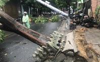 Điện lực Đà Nẵng lên tiếng về vụ cột điện bị gãy do ảnh hưởng bão số 5