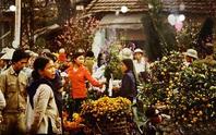Tết Việt Nam xưa qua góc nhìn của học giả Việt Nam và quốc tế
