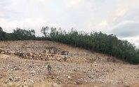Nha Trang tái diễn nạn khoét núi, phân lô