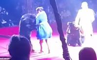 Nghệ sĩ xiếc mang thai bị gấu tấn công trên sân khấu