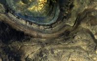 Dấu hiệu lạ: sinh vật ngoài hành tinh y hệt loài cổ quái nhất Trái Đất?