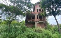 CLIP: Hàng loạt biệt thự bỏ hoang, khu đô thị ở Hà Nội thành nơi chăn thả bò