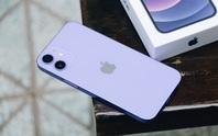 iPhone 11, 12 có đợt giảm giá mạnh nhất từ đầu năm