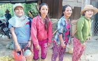 Gửi sản vật cho người dân TP HCM, bà con Trà Leng muốn đền đáp ân tình