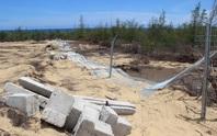 Chuyện thật như đùa ở Bình Định: Doanh nghiệp phá rừng, huyện báo cáo lấn chiếm đất!