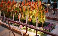 Hà Nội sẽ có đường hoa quanh hồ Hoàn Kiếm