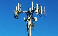 Dùng thêm băng tần 900 MHz tăng chất lượng sóng 3G
