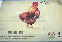 """Malaysia xin lỗi vì để """"gà sủa gâu gâu"""""""