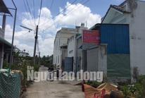 Cần Thơ: Đề nghị xử lý Chủ tịch UBND quận Bình Thủy do buông lỏng quản lý
