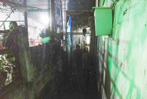 Hai người tử vong bất thường trong phòng trọ ở Biên Hòa
