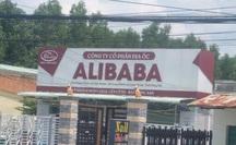 """UBND huyện Long Thành - Đồng Nai """"dính"""" sai phạm của Alibaba?"""