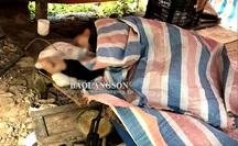 Phát hiện nghi phạm vụ nổ súng làm 7 người thương vong chết trong rừng