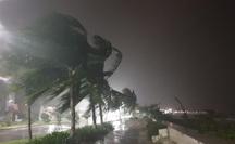 Miền Trung nín thở hứng bão số 9: Nhiều nhà tốc mái, cây cối bắt đầu ngã đổ