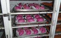 Bánh mì thanh long nở rộ tại Bình Thuận