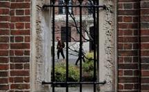 Du học sinh lao đao vì quyết định mới của chính phủ Mỹ