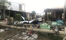 Hàng trăm cột điện gãy đổ trong bão số 5: Do cây xanh ngã đè