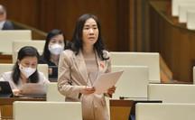Đại biểu Quốc hội thảo luận về đề xuất trang bị máy bay, tàu thuyền cho cảnh sát cơ động